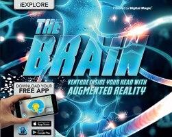 Iexplore-brain (ar)