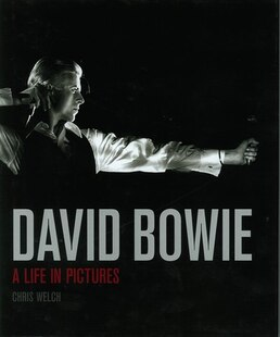 David Bowie A Life In Pictures