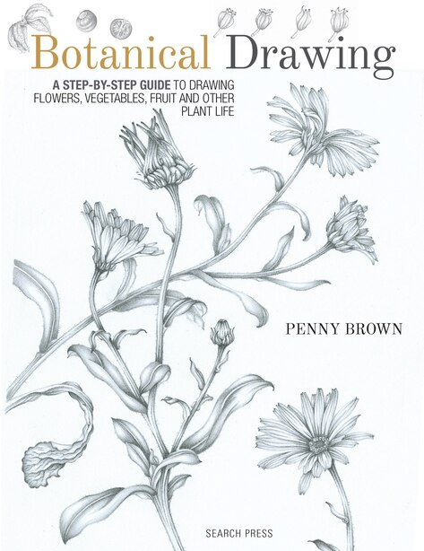 Botanical Drawing: A Step-by-step Guide To Drawing Flowers