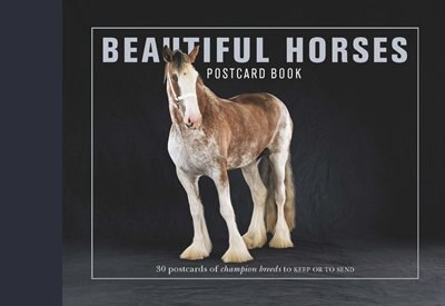 Beautiful Horses Postcard Book: 30 Postcards Of Champion Breeds To Keep Or To Send by Liz Wright
