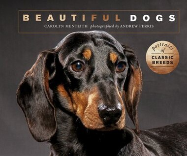 Beautiful Dogs by Carolyn Menteith
