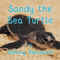 Sandy the Sea Turtle