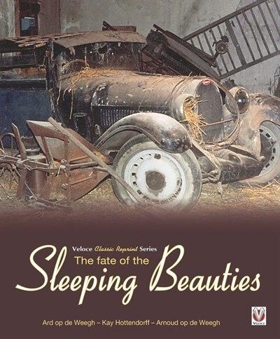 The Fate Of The Sleeping Beauties by Ard op de Weegh