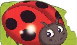 Book Chunky Ladybug by Na