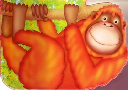 Book Chunky Orangutan by Autumn Books