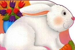 Book Chunky Rabbit by Autumn Books