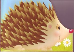 Book CHUNKY HEDGEHOG by Books Autumn