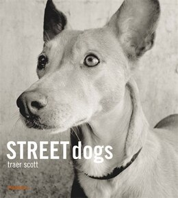 Book Street Dogs by Traer Scott
