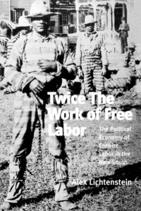 Twice The Work Of Free Labor: The Political Economy Of Convict Labor In The New South