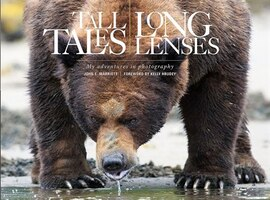 Tall Tales, Long Lenses: My Adventures in Wildlife Photography