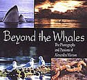 Beyond the Whales: The Photographs and Passions of Alexandra Morton by ALEXANDRA MORTON