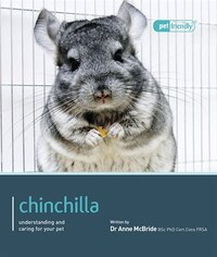 Chinchilla.