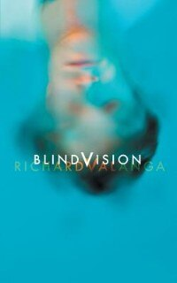 Blind Vision by Richard Valanga
