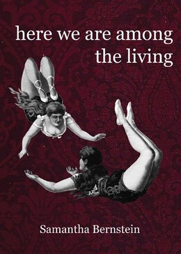 Book Here We Are Among The Living by Samantha Bernstein