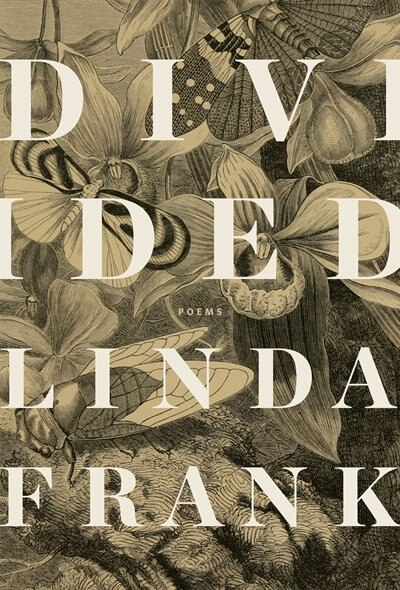 Divided by Linda Frank