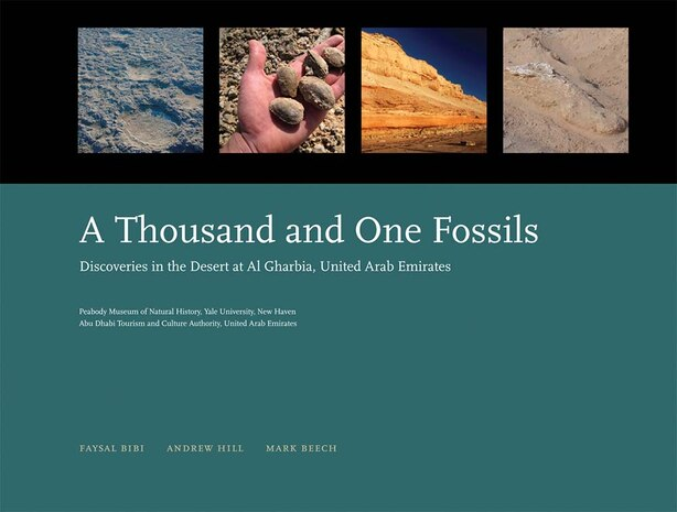 A Thousand And One Fossils: Discoveries In The Desert At Al Gharbia, United Arab Emirates by Faysal Bibi