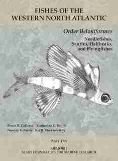 Order Beloniformes: Needlefishes, Sauries, Halfbeaks, And Flyingfishes: Part 10 by Bruce B. Collette