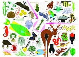 Book Charley Harper's Animal Kingdom by Todd Oldham