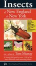 Insects Of New England & New York by Tom Murray
