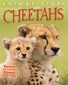 Animal Lives:cheetahs
