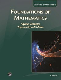 Foundations Of Mathematics: Algebra, Geometry, Trigonometry And Calculus