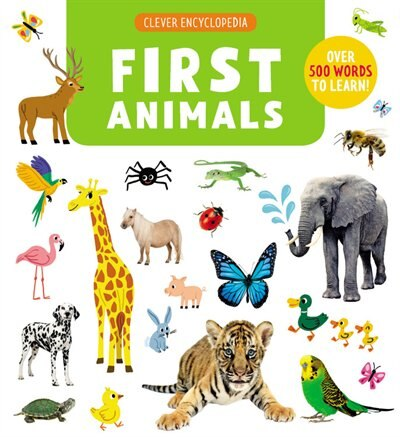 1ST ANIMALS: Over 500 Words To Learn! by Na