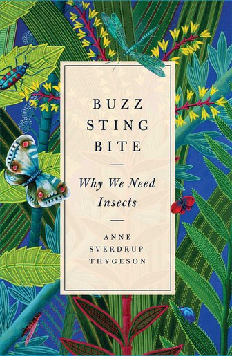 Buzz, Sting, Bite: Why We Need Insects by Anne Sverdrup-Thygeson