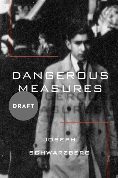 Dangerous Measures by Joseph Schwarzberg