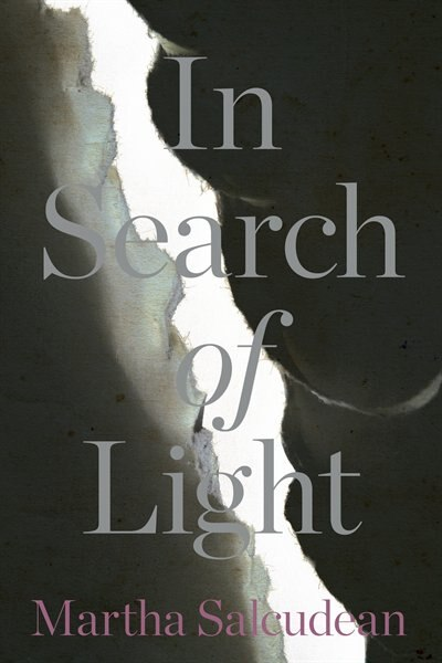 In Search of Light by Martha Salcudean