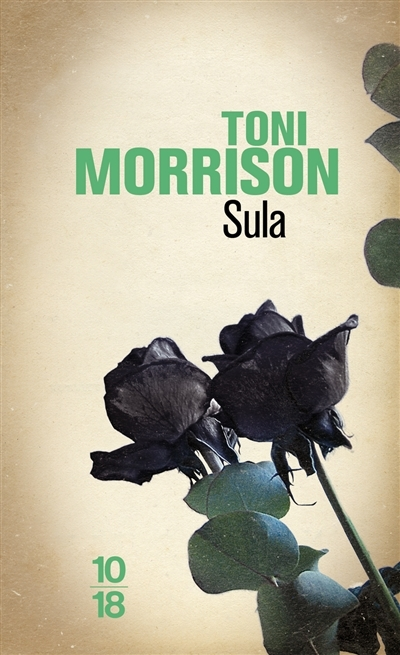 critical essays on sula by toni morrison