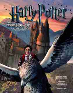 Harry Potter un livre pop-up by Bruce Foster