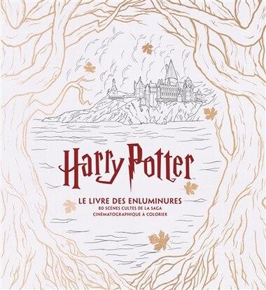 Harry Potter - Le livre des enluminures by J.m. Collectif