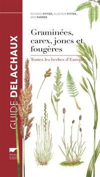 Graminées, carex, joncs et fougères. Toutes les herbes d'Europe: Toutes les herbes de l'Europe