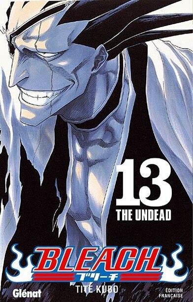 Bleach volume 13 by Taito Kubo