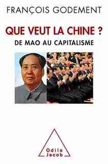 QUE VEUT LA CHINE : DE MAO AU CAPITALISME by François Godement