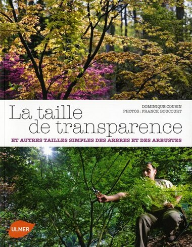 Taille de transparence (La) by Dominique Cousin
