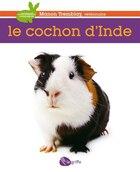 COCHON D'INDE -LE