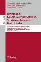 Brainlesion: Glioma, Multiple Sclerosis, Stroke And Traumatic Brain Injuries: Third International…