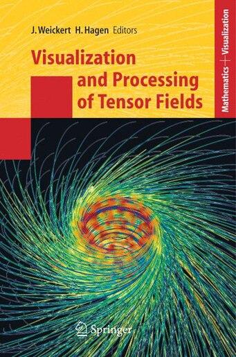 Visualization And Processing Of Tensor Fields: Proceedings Of The Dagstuhl Workshop by Joachim Weickert