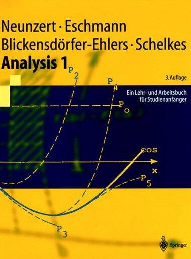 Analysis 1: Ein Lehr- Und Arbeitsbuch Fr Studienanfnger by H Neunzert