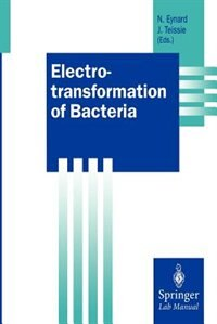 Electrotransformation Of Bacteria by Natalie Eynard