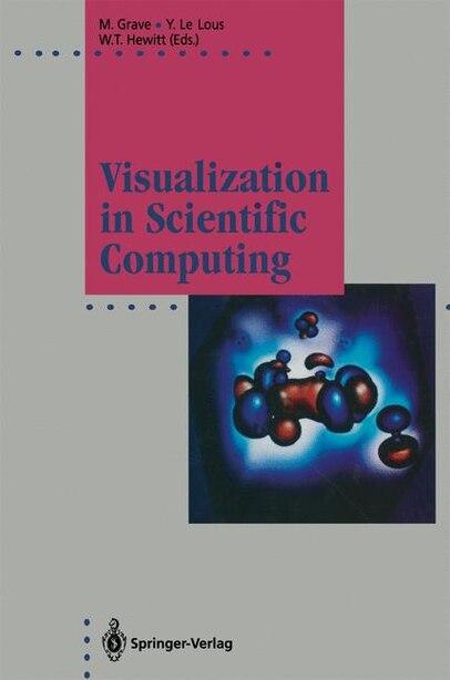 Visualization in Scientific Computing by Michel Grave