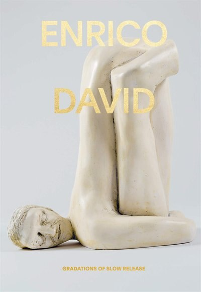 Enrico David: Gradations Of Slow Release by Michael Darling