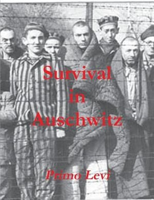 essay survival auschwitz primo levi Essay: survival in auschwitz in the book survival in auschwitz, primo levi paints a picture with disturbing detail that is meant to serve as a reminder of the.