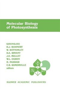 Molecular Biology Of Photosynthesis by D.a. Govindjee