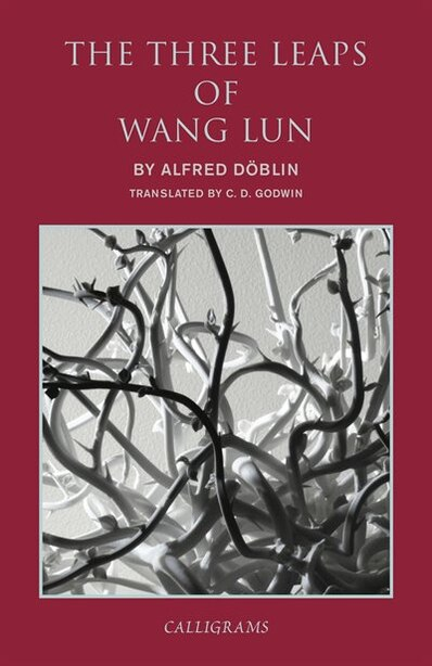 The Three Leaps Of Wang Lun: A Chinese Novel by Alfred Doblin