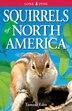 Squirrels of North America by Tamara Eder