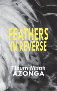 Feathers in Reverse by Tikum Mbah Azonga