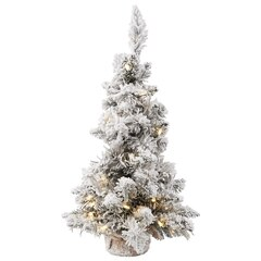 Flocked Ridge Spruce Tree – 24""