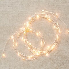 Silver-String LED 30-Light Indoor Strand – Warm White, 5'